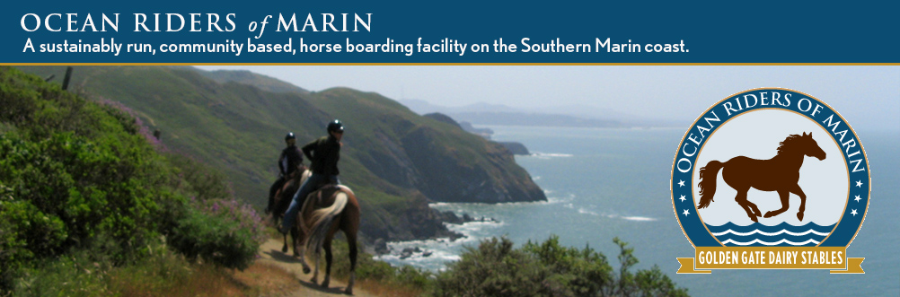 Ocean Riders of Marin